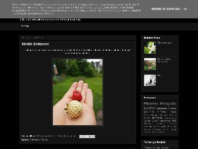 http://monkeykong82.blogspot.com/